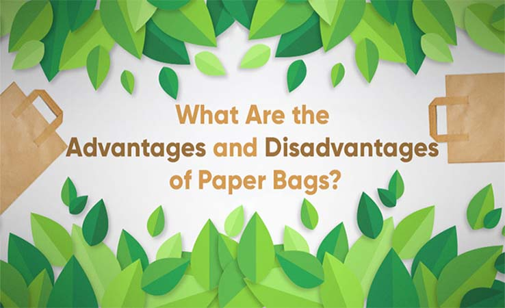 What Are the Advantages and Disadvantages of Paper Bags?